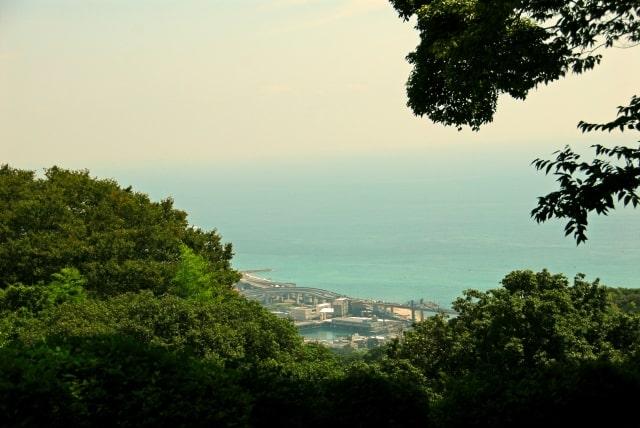 山から見下ろす早川の海